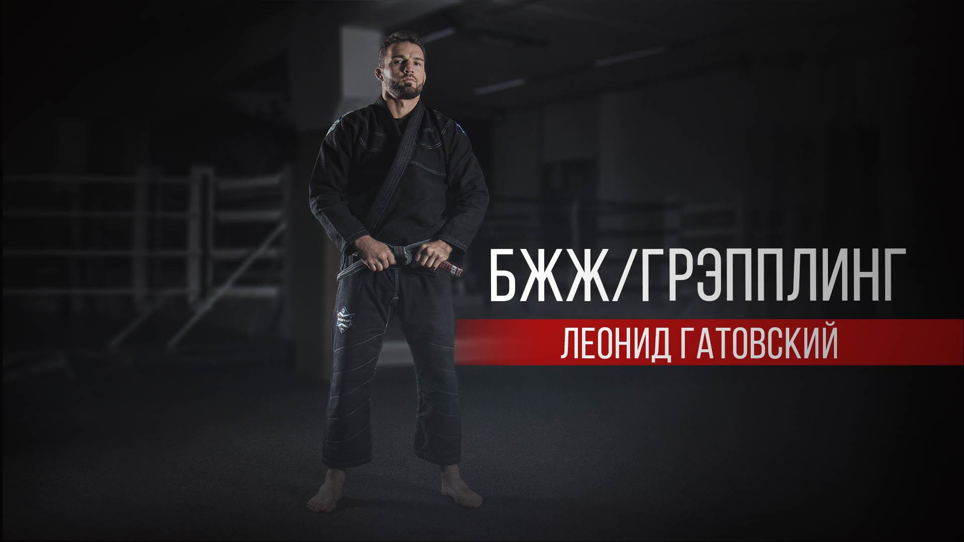 Гатовский